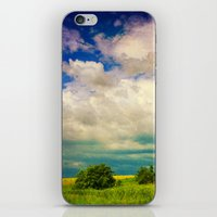In A Landscape iPhone & iPod Skin