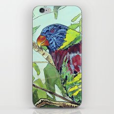 Paint by Numbers iPhone & iPod Skin