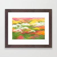 Tulip Field Abstract - H… Framed Art Print
