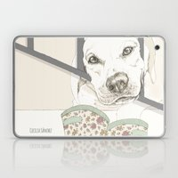 Pipo Laptop & iPad Skin