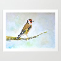 European goldfinch on tree branch Art Print