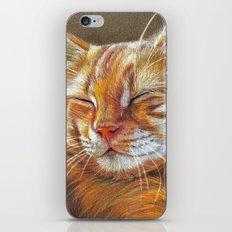 Sleeping Ginger Kitten CC12-005 iPhone & iPod Skin