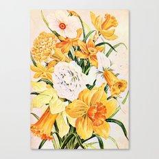 Wordsworth  and daffodils.  Canvas Print