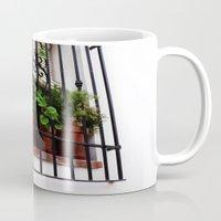 Whitewashed Walls Mug