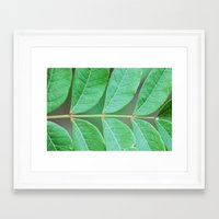 Stem Framed Art Print