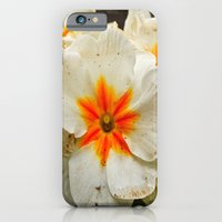 Park beauty iPhone 6 Slim Case