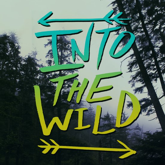 Into the Wild IV Canvas Print