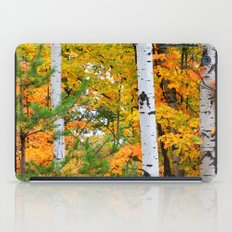 Birch Trees and Autumn Colors iPad Case