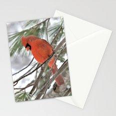 Snow Globe Cardinal Stationery Cards
