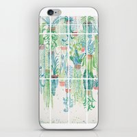 Winter in Glasshouses II iPhone & iPod Skin