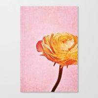 A Dream Of Spring Canvas Print