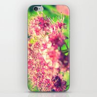 Florid Fuchsia iPhone & iPod Skin
