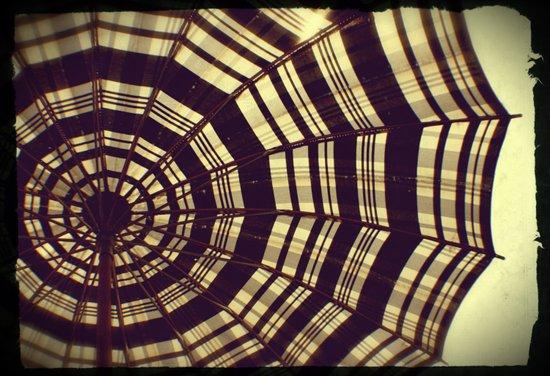 Antique Umbrella Canvas Print