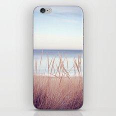 Gitche Gumee iPhone & iPod Skin
