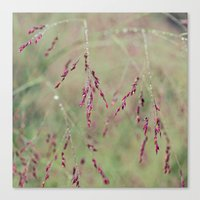 Dewy Pastel Canvas Print