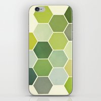 Shades Of Green iPhone & iPod Skin