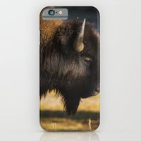 Yellowstone National Park - Bison iPhone 6 Slim Case