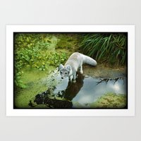 Get Your Feet Wet Art Print