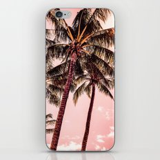 Tropical blush iPhone & iPod Skin
