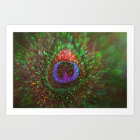 Shimmering Peacock Feath… Art Print