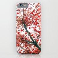 Star Berries iPhone 6 Slim Case