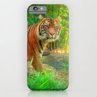iPhone & iPod Case featuring Tiger Tiger by Tanella