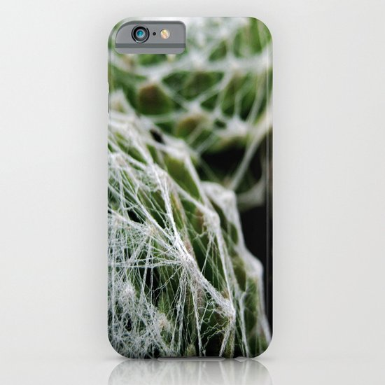 Leslie the Cactus  iPhone & iPod Case