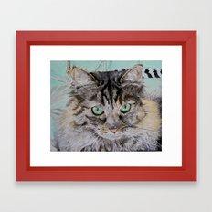 Fran the Tabby Cat Framed Art Print