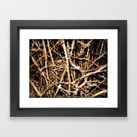 Nested In Thorns Framed Art Print
