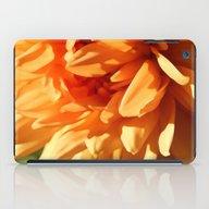 Vermont Autumn Golden Fl… iPad Case