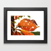 Shine A Light Framed Art Print