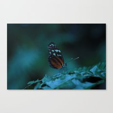 Delicate Darkness Canvas Print