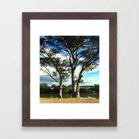 White Gum Trees Framed Art Print