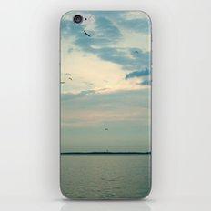 Lake Erie Twilight iPhone & iPod Skin