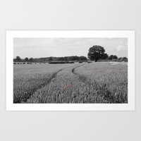 Summer Fields #7 Art Print