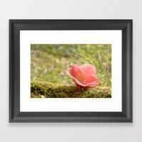 Morning Flower Framed Art Print