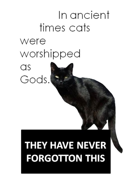 In Ancient Times Cats Were Worshipped As Gods Art Print
