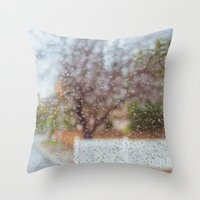 Fence in the Rain Throw Pillow