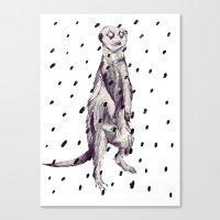 Meerkat in the Rain Canvas Print