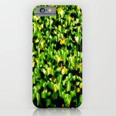 Water Lillies  iPhone 6 Slim Case