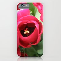 A Little Shy #2 iPhone 6 Slim Case