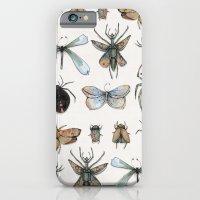 Entomology iPhone 6 Slim Case