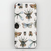 Entomology iPhone & iPod Skin