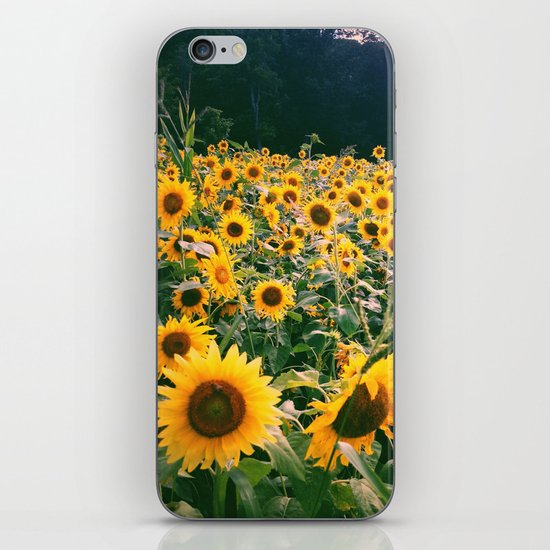 Gather iPhone & iPod Skin