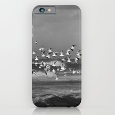 Seagulls flying over the mediterranean sea in Tel Aviv,Israel Slim Case iPhone 6s