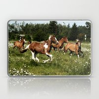 Spring Horse Run Laptop & iPad Skin
