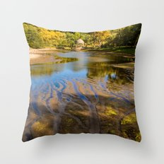 Lake patterns,Larz Aderson park Throw Pillow