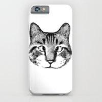 Strabismus Cat iPhone 6 Slim Case