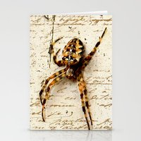 Spider Letter Stationery Cards