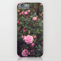 iPhone & iPod Case featuring Sweet Summertime II by Oh, Good Gracious!